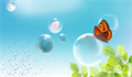 Butterfly and bubbles for memorial service